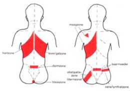 Head zones Massagepraktijk Jansen